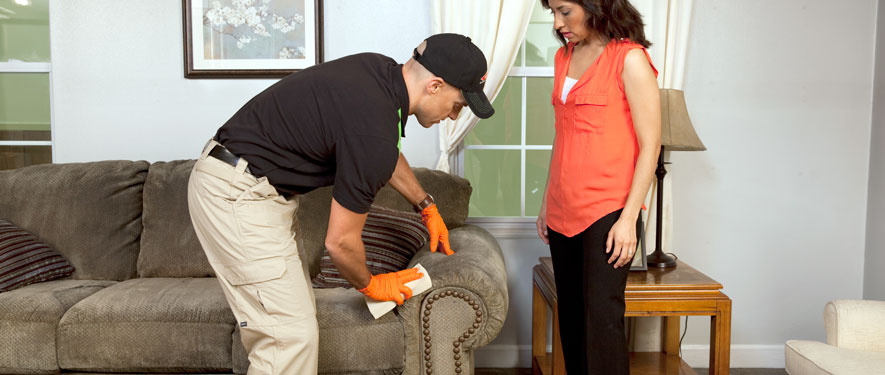 Evanston, IL carpet upholstery cleaning